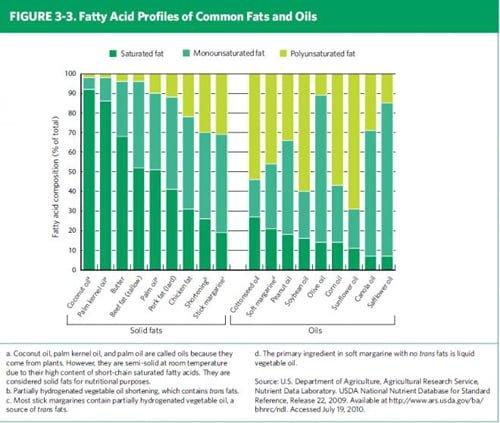 Fat Matters: Understanding Dietary Guidance on Dietary Fats — International  Food Information Council
