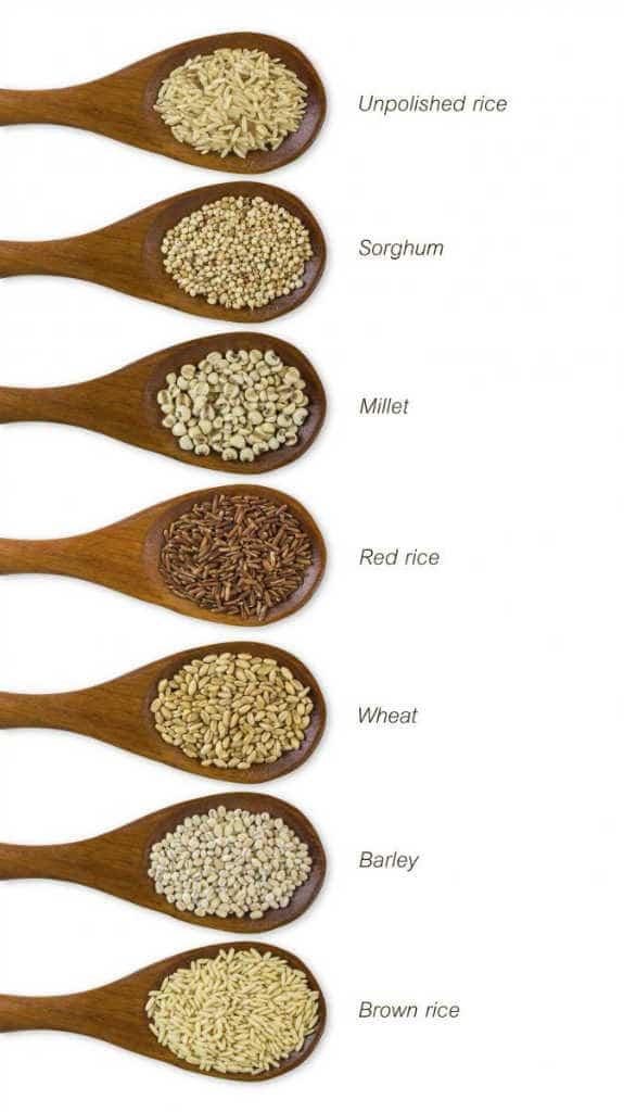 whole-grains-rice-sorghum-millet-wheat-barley