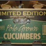 recalled-cucumbers