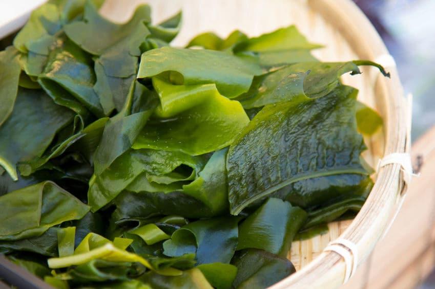 seaweed-salad-healthy