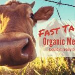 Fast Take Organic Meat Dairy_2.jpg