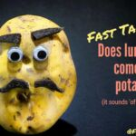 Is lung cancer coming from potatoes-_2.jpg