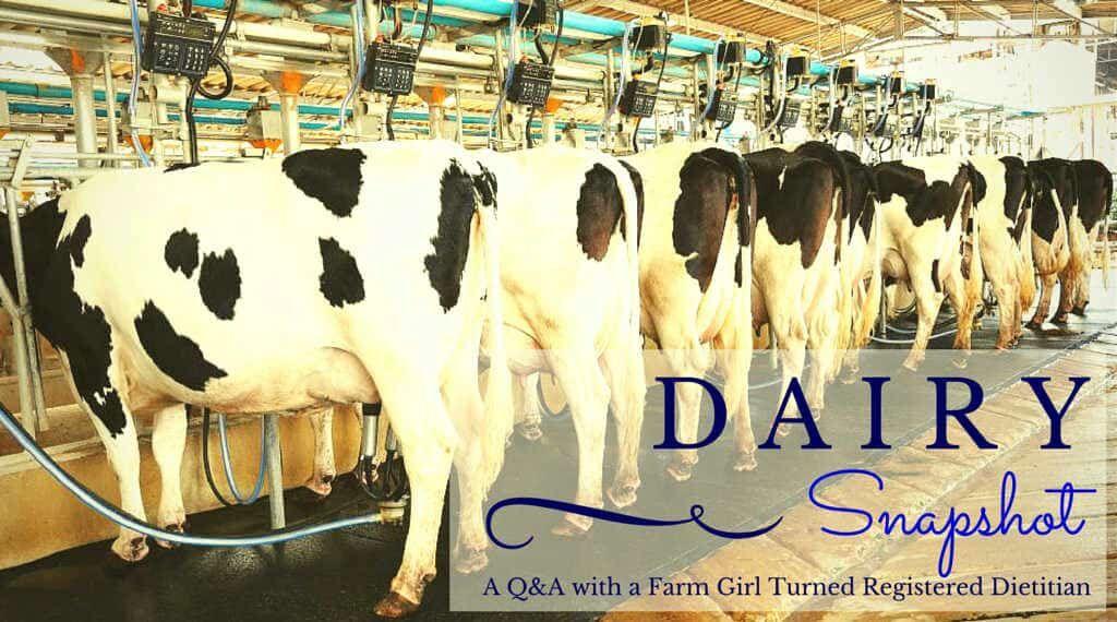 dairy snapshot.jpg