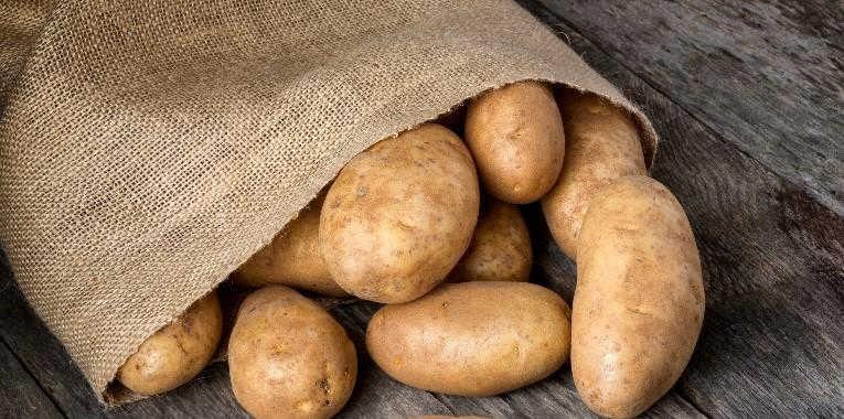 genetic-potato.jpg