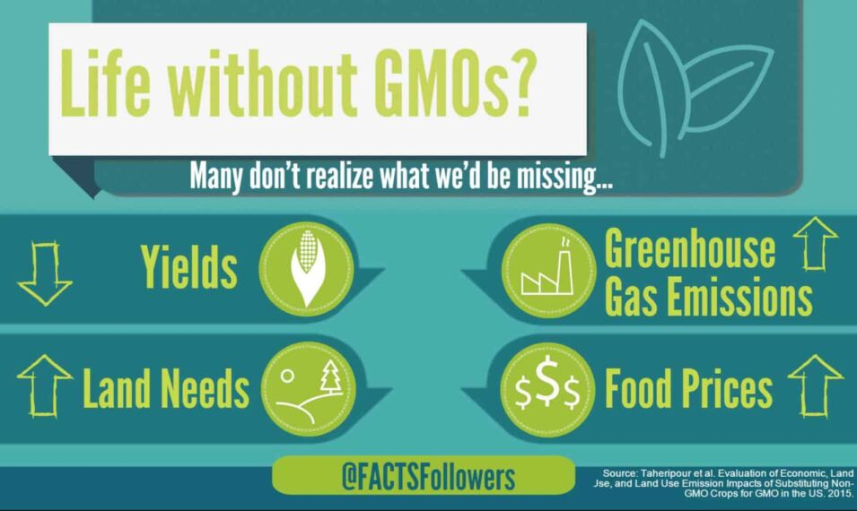 life-without-gmos_3.jpg