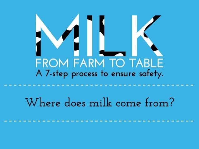 Milk Production: From Farm to Table