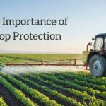 The Importance of Crop Protection_2.jpg