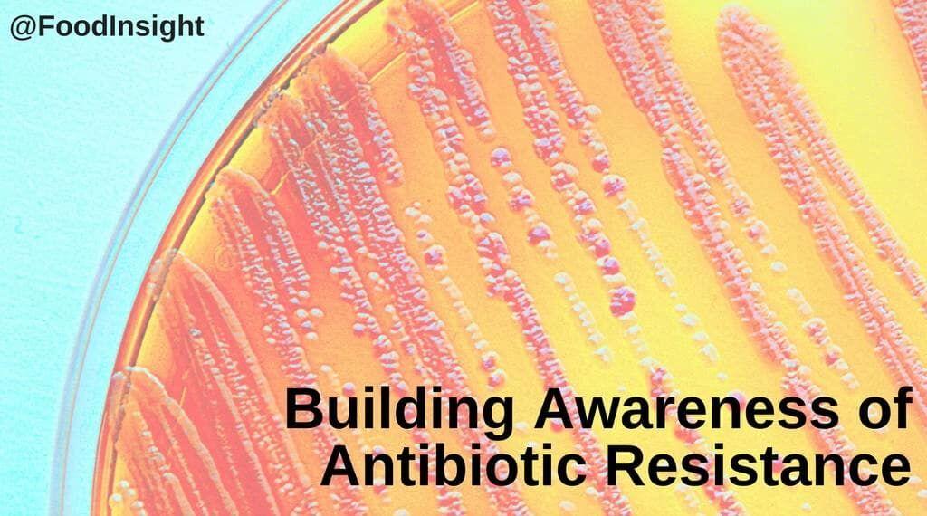 Building Awareness of Antibiotic Resistance (1)_2.jpg