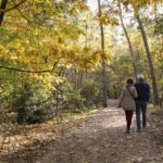 autumn-walk.jpg