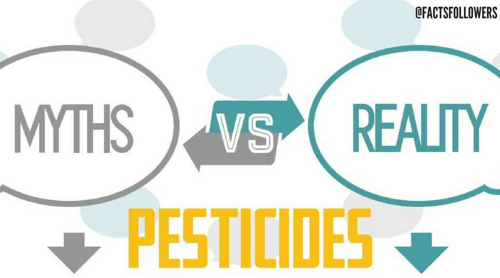 Myth vs Reality Pesticides_0.jpg