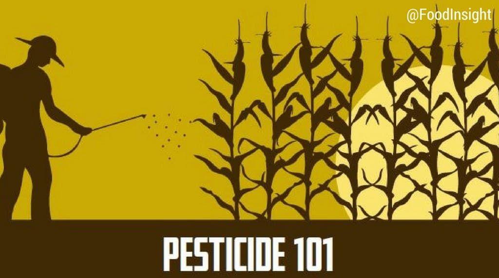 pesticide 101 header_0.jpg