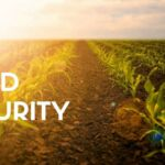 food security header_1.jpg
