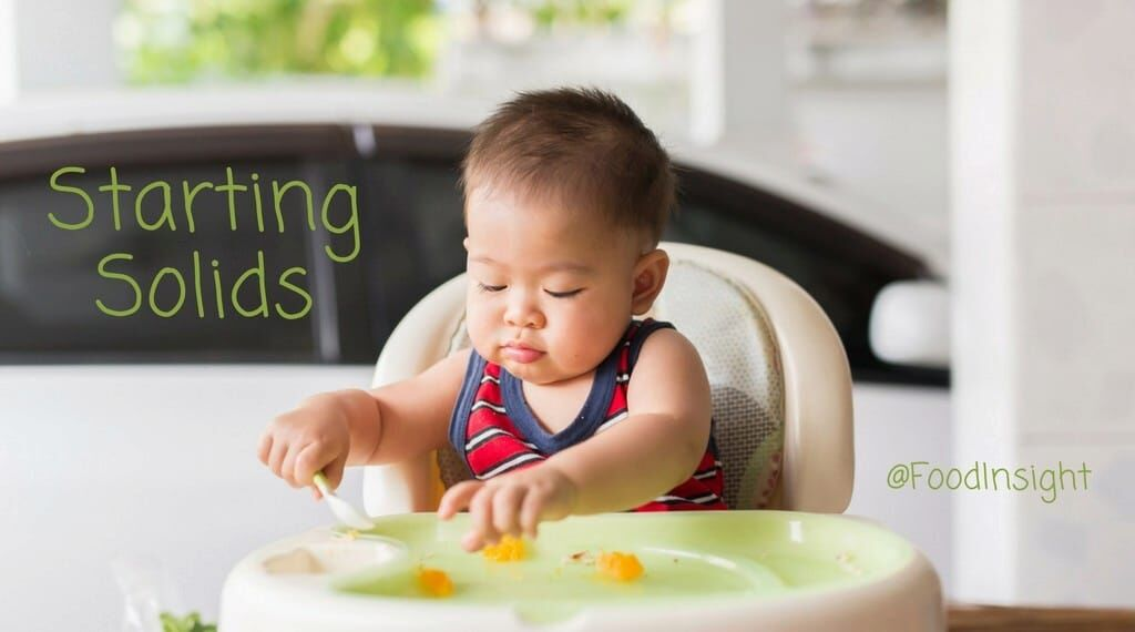 a guide to starting solids_0.jpg
