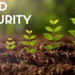 food security 2 header_1.jpg