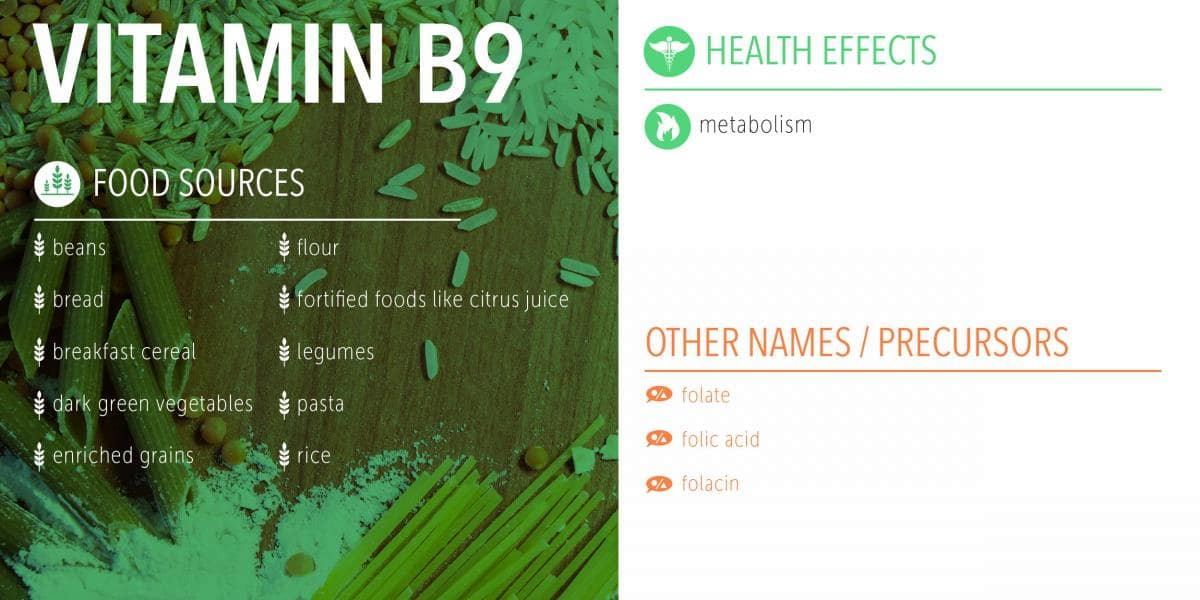 vitamin b9 food sources