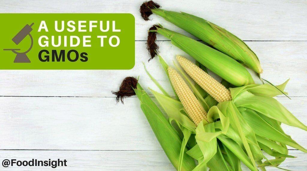 useful guide to gmos_0.jpg