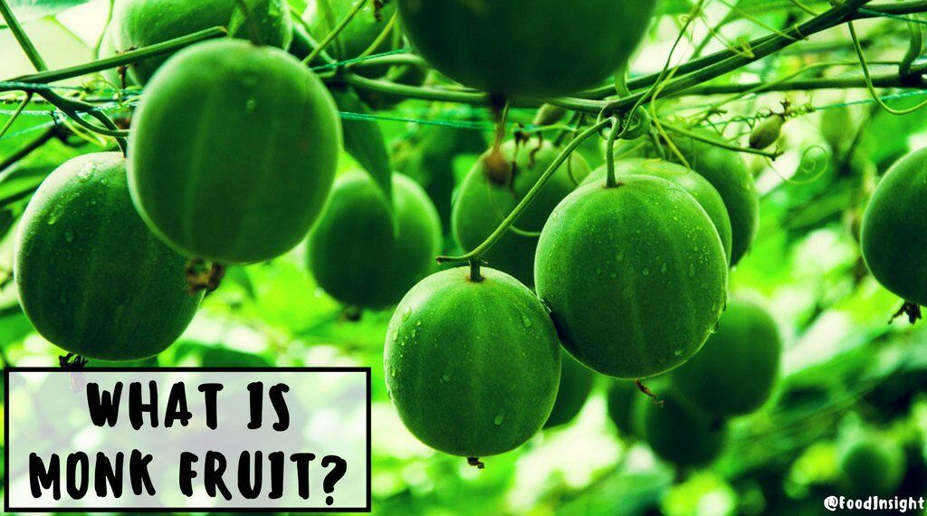what is monk fruit infographic FINAL.jpg