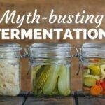 fermentation (3)_optimized.jpg