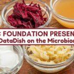datadish podcast microbiome_0.jpg