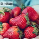 dirty dozen_0.jpg